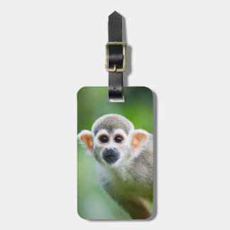 Close-up of a Common Squirrel Monkey Luggage Tag