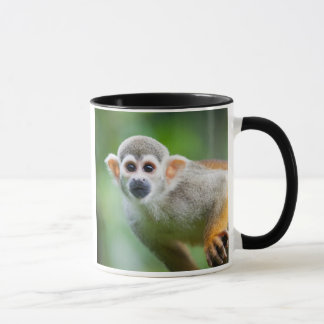 Close-up of a Common Squirrel Monkey Mug