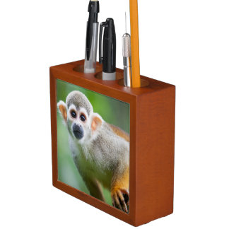 Close-up of a Common Squirrel Monkey Pencil Holder