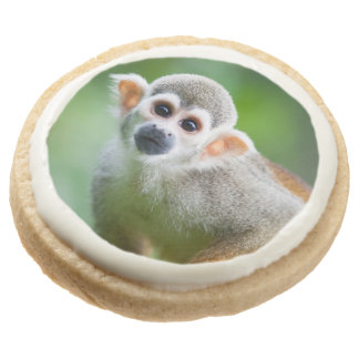 Close-up of a Common Squirrel Monkey Round Shortbread Cookie