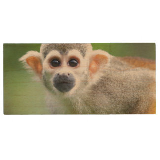 Close-up of a Common Squirrel Monkey Wood USB Flash Drive