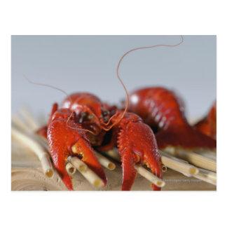 Close-up of a crab on sticks postcard