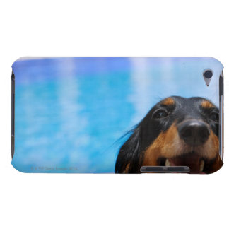Close-up of a Dachshund dog panting iPod Touch Cover
