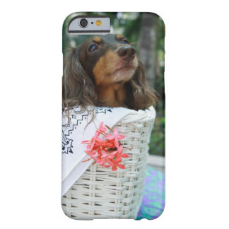 Close-up of a Dachshund dog sitting in a basket Barely There iPhone 6 Case