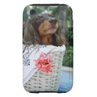 Close-up of a Dachshund dog sitting in a basket iPhone 3 Tough Cover