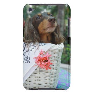Close-up of a Dachshund dog sitting in a basket iPod Touch Case-Mate Case