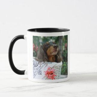 Close-up of a Dachshund dog sitting in a basket Mug