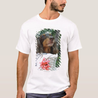 Close-up of a Dachshund dog sitting in a basket T-Shirt