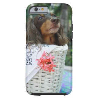 Close-up of a Dachshund dog sitting in a basket Tough iPhone 6 Case