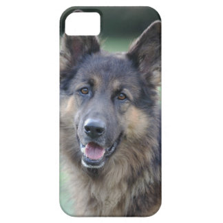 close-up of a dog face iPhone 5 cover