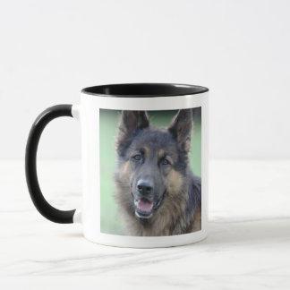 close-up of a dog face mug