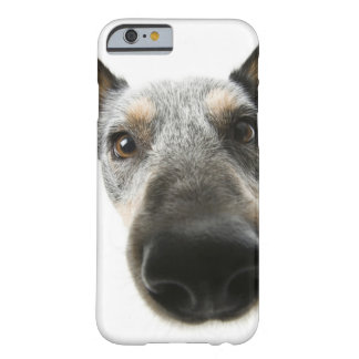 Close-up of a dog's head barely there iPhone 6 case