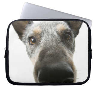 Close-up of a dog's head laptop computer sleeves