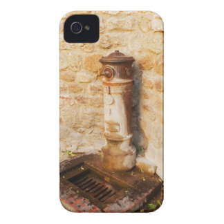 Close-up of a faucet, Siena Province, Tuscany, 2 Case-Mate iPhone 4 Case