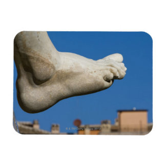 close-up of a foot on the Fontana dei Quatro Magnet
