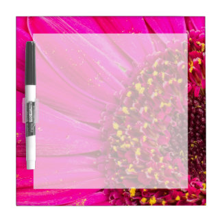 Close-up of a Gerber daisy Dry-Erase Board