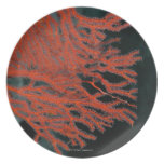 Close-up of a Gorgonian Sea Fan Party Plate