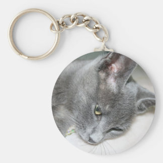 Close Up Of A Grey Kitten Keychain