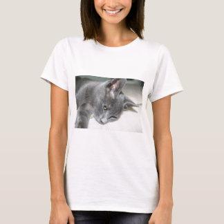 Close Up Of A Grey Kitten T-Shirt