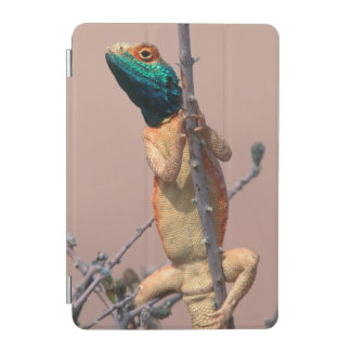Close-Up Of A Ground Agama (Agama Aculeata) iPad Mini Cover