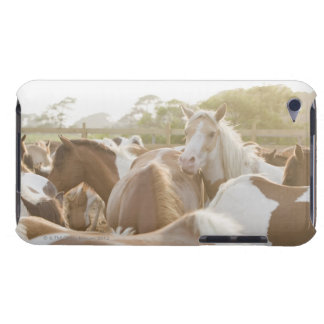 Close up of a herd of horses iPod touch Case-Mate case