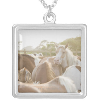 Close up of a herd of horses silver plated necklace