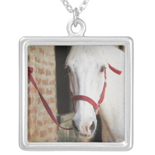 Close-up of a horse 2 silver plated necklace