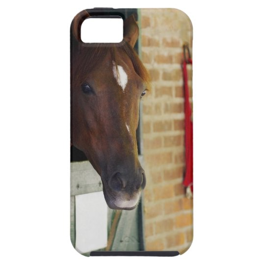 Close-up of a horse 3 iPhone SE/5/5s case