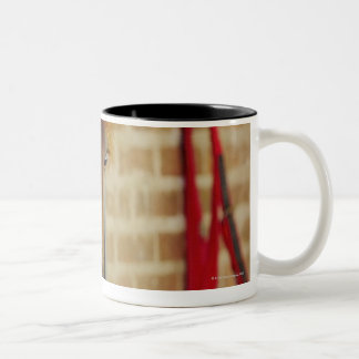 Close-up of a horse 3 Two-Tone coffee mug
