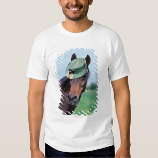 Close-up of a horse wearing a green hat t shirt