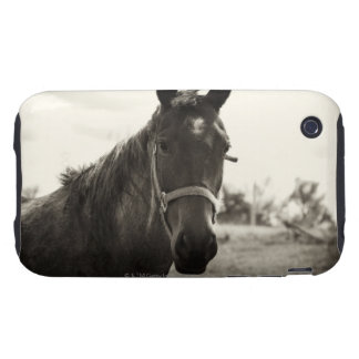close up of a horse with sepia tone applied tough iPhone 3 case