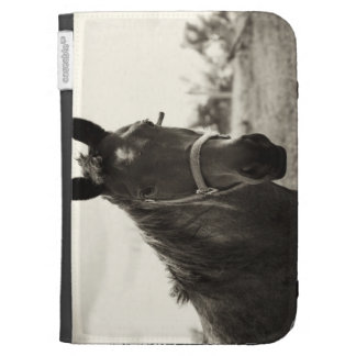 close up of a horse with sepia tone applied kindle 3 cover