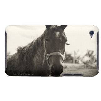 close up of a horse with sepia tone applied iPod touch case