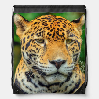 Close-up of a jaguar face, Belize Drawstring Backpack