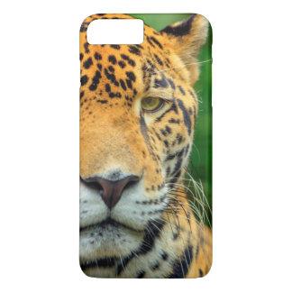 Close-up of a jaguar face, Belize iPhone 8 Plus/7 Plus Case