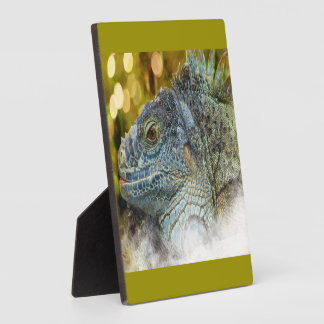 Close Up of a Large Scaly Green Iguana Lizard Plaque