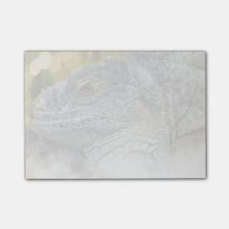 Close Up of a Large Scaly Green Iguana Lizard Post-it Notes
