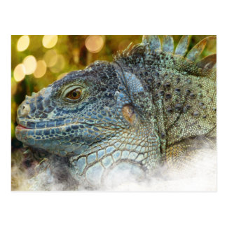 Close Up of a Large Scaly Green Iguana Lizard Postcard