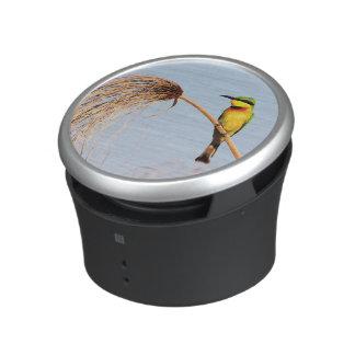 Close-up of a little bee-eater bird bluetooth speaker