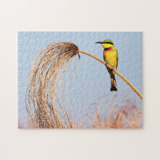 Close-up of a little bee-eater bird jigsaw puzzle