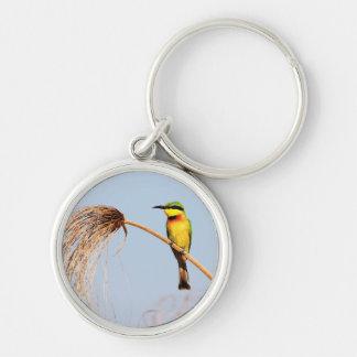 Close-up of a little bee-eater bird keychain