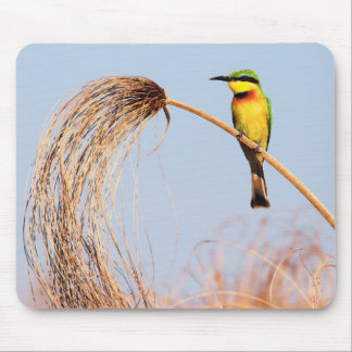 Close-up of a little bee-eater bird mouse pad