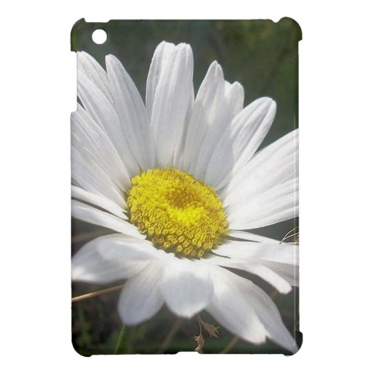 Close Up of a Margarite Daisy Flower iPad Mini Case
