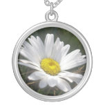 Close Up of a Margarite Daisy Flower Jewelry