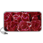 close-up of a mass of red roses iPhone speaker