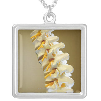 Close-up of a medical model of vertebrae of the silver plated necklace