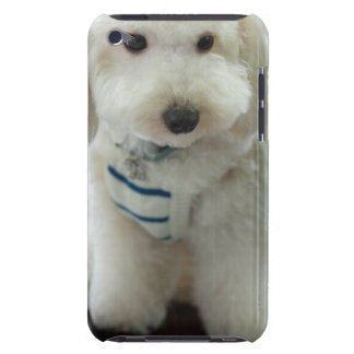 Close-up of a miniature poodle barely there iPod cover