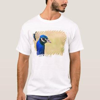 Close-up of a peacock 2 T-Shirt