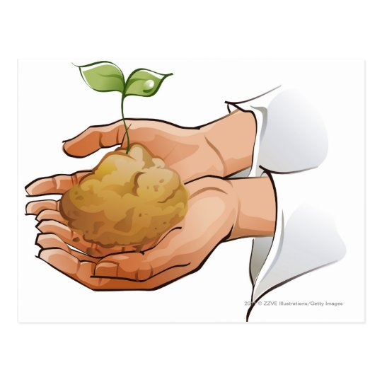 Close-up of a person's hands holding seedling postcard