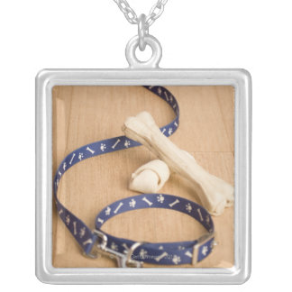 Close-up of a pet collar and a leash with dog custom jewelry